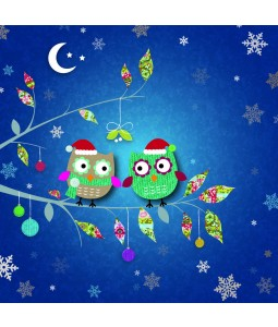 A Christmas card pack with two Owls on a branch