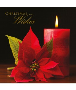 A Christmas card pack with a vibrant Poinsettia flower and candle