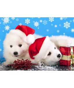 A Christmas card pack with cute puppies.
