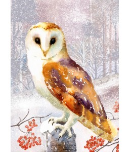 A Christmas card pack with a painted Owl perched in the woods