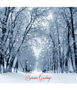 A Christmas card pack with a snowy scene of a woodland path.