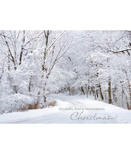 A Christmas card pack with a beautiful Snow scene