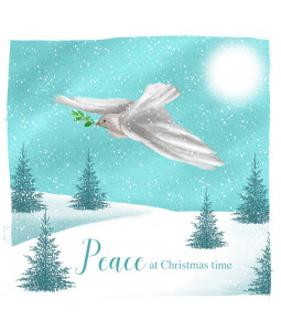 Dove of Peace - Large Christmas Card Pack