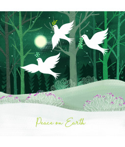 Bringing Peace - Small Christmas Card Pack