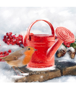 Watering Can Robin - Small Christmas Card Pack