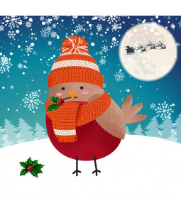 Holly Robin -  Large Christmas Card Pack