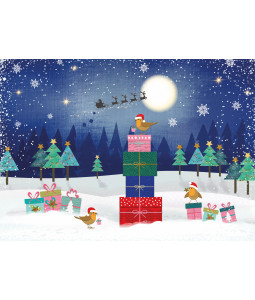Robin's Presents - Christmas Card Pack
