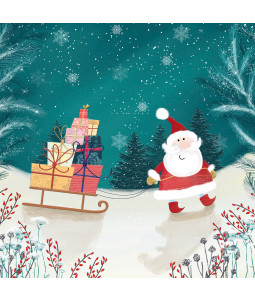 Santa and His Sleigh - Small Christmas Card Pack