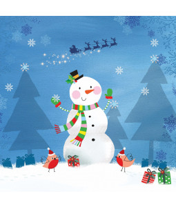 Cheerful Snowman - Small Christmas Card Pack