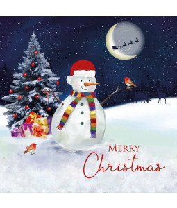 Midnight Snowman - Large Christmas Card Pack
