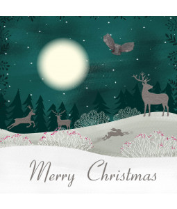 Midnight Owl - Large Christmas Card Pack