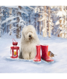 Dog with a Lantern - Large Christmas Card Pack
