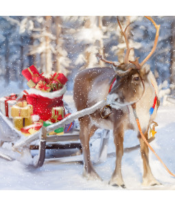 Reindeer and Presents - Small Christmas Card Pack