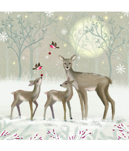A Christmas Family - Small Christmas Card Pack