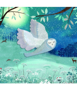 Wintertime Owl - Small Christmas Card Pack