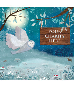 A Christmas card pack with a wintertime Owl.
