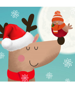 Cute Friend- Small Christmas Card Pack