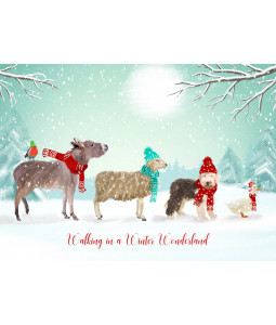 Winter Friends - Christmas Card Pack
