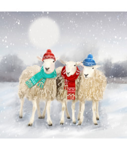 BAAAA Christmas - Large Christmas Card Pack
