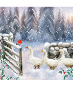 Geese in Winter - Large Christmas Card Pack
