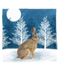 Christmas Hare - Small Christmas Card Pack