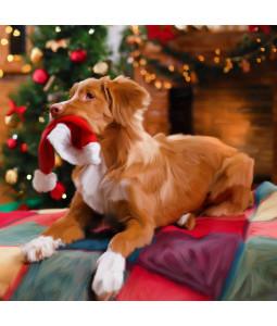 I've got your Hat - Large Christmas Card Pack