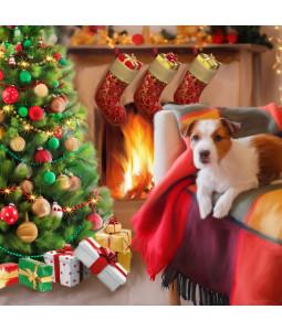 Comfy Christmas - Large Christmas Card Pack