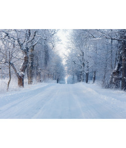 Frosty Road - Christmas Card Pack