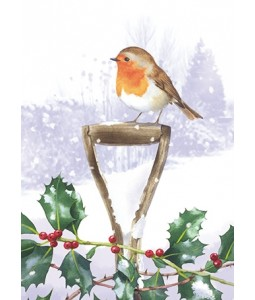 On the look out - Christmas Card Pack
