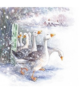Gaggle of Geese - Small Christmas Card Pack
