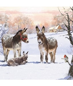 Donkey Family - Small Christmas Card Pack