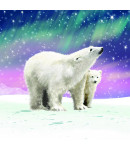 The Northern Lights - Small Christmas Card Pack