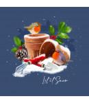 Plant Pot Robins - Small Christmas Card Pack