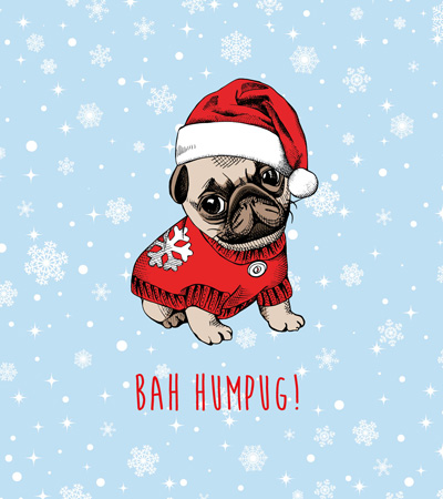 Bah Humpug - Christmas Card Packs - Christmas Fun
